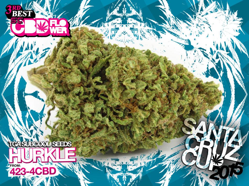 scc15_CBD3_hurkle-4234CBD