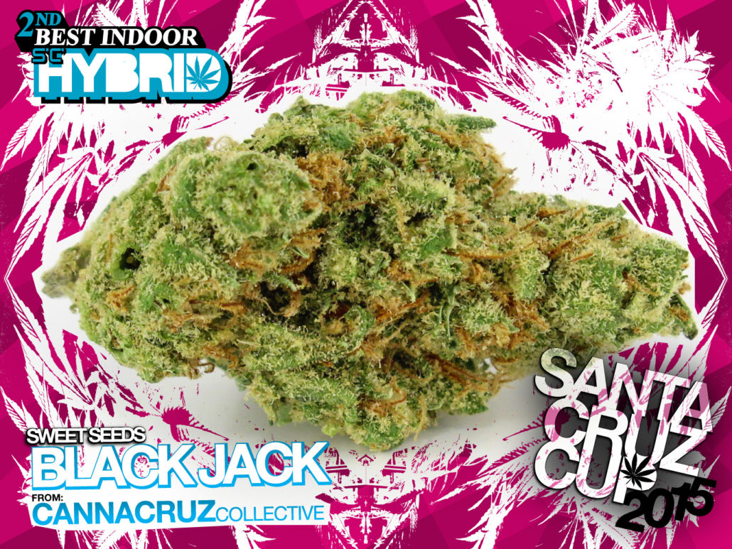 scc15_IDh2_Black-Jack
