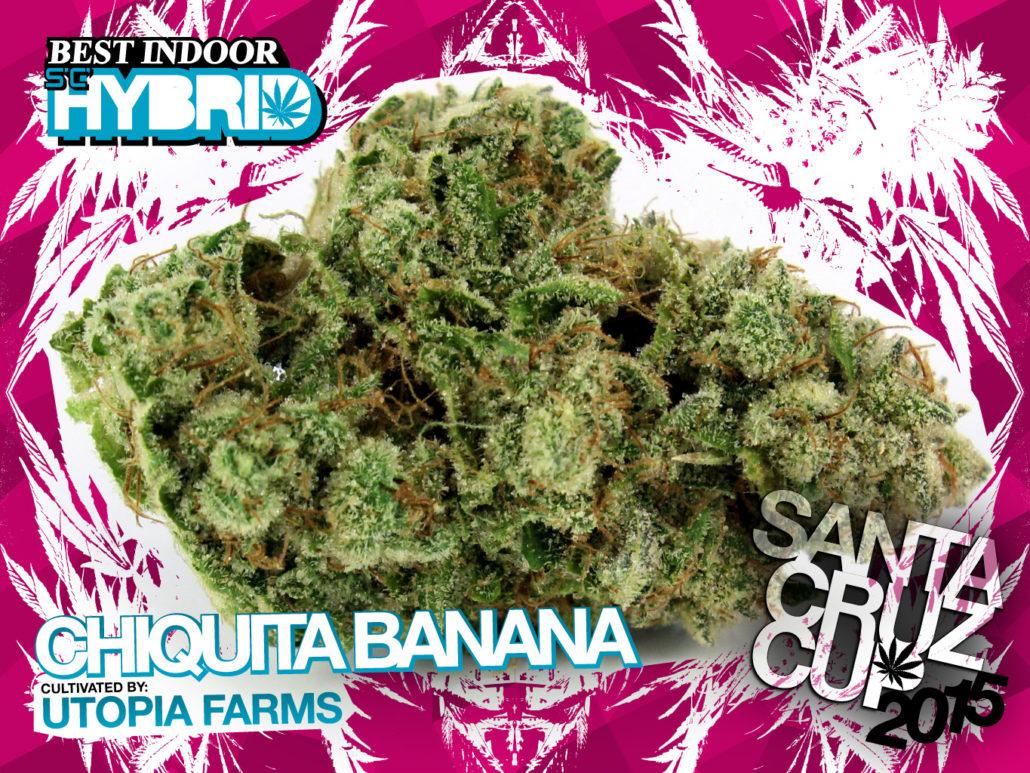 scc15_IDh_chiquita-banana