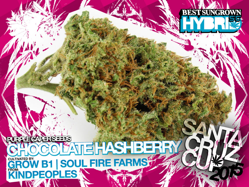 scc15_SGh_chocolate-hashberry