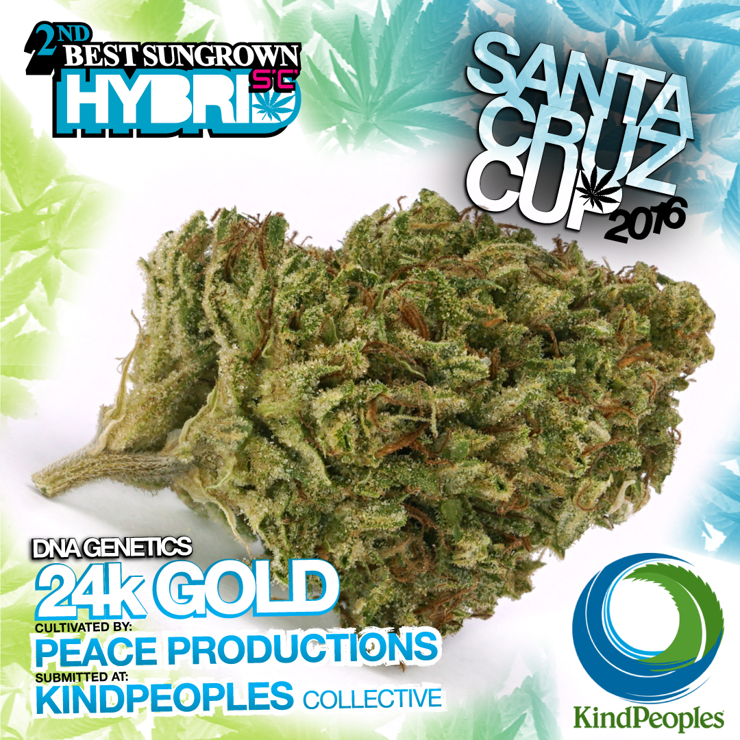 Peace productions kind peoples dna genetics 24k gold