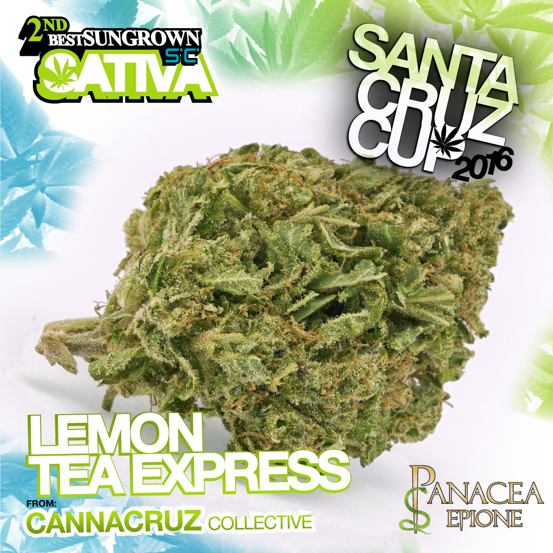 cannacruz collective lemon tea express best sativa